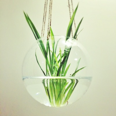 Hanging Round Ball Tealight Candle Holder Vase x2