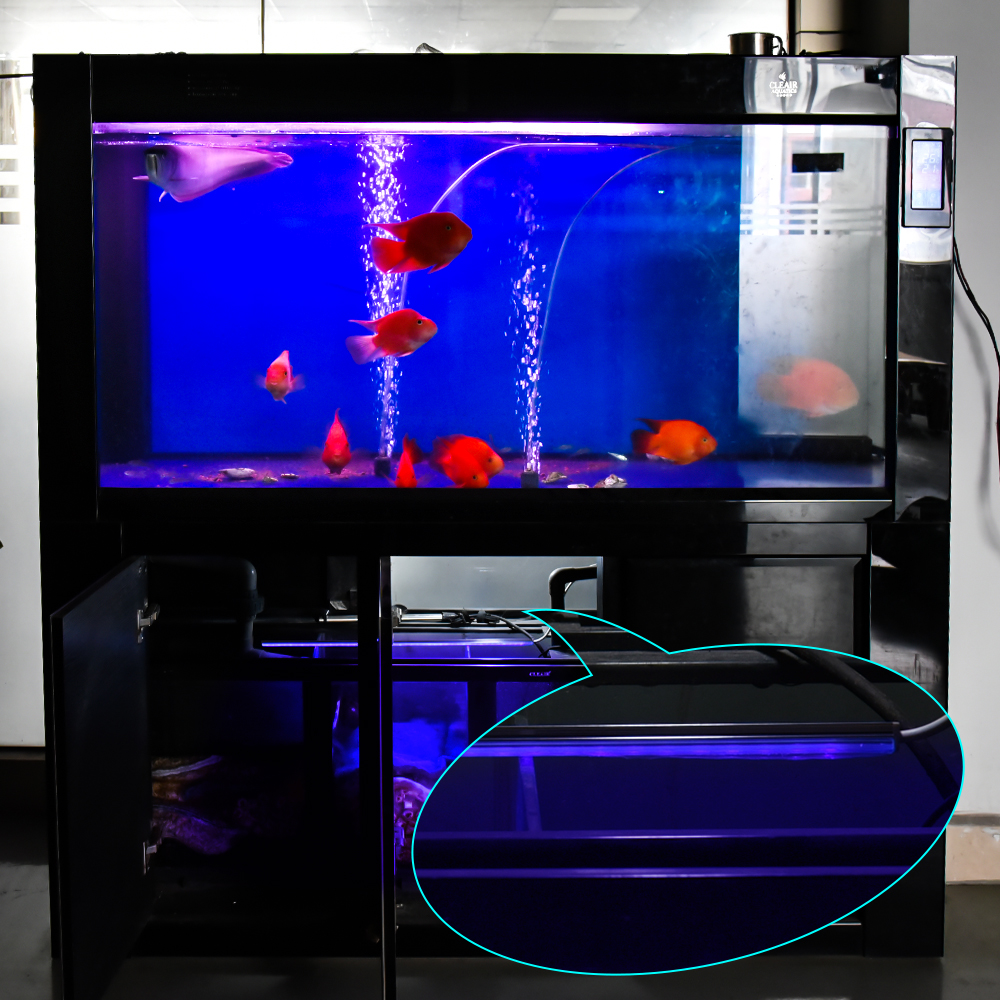 aquarium uv lamp 5v usb ultraviolet filter water cleaner. Black Bedroom Furniture Sets. Home Design Ideas