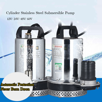 12V 120W Stainless Steel Agricultural DC Submersible Pump High Delivery Range Electrical Water Suction Pump Household