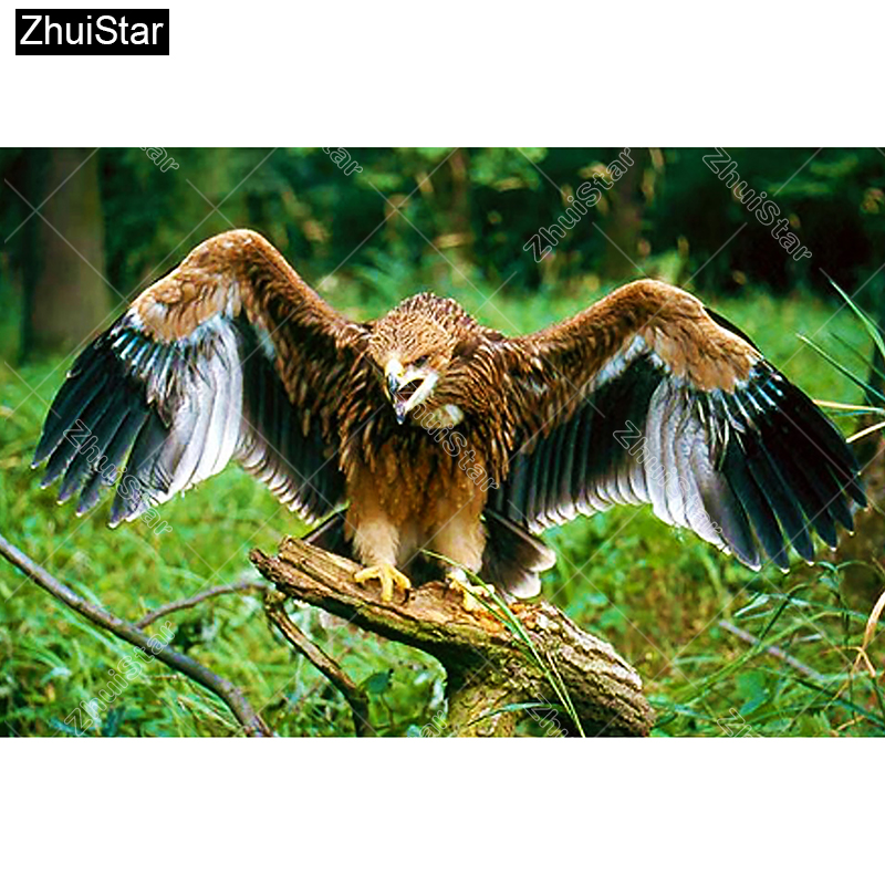 Flying Eagle Paintings New Arrived Cross Stitch For Gift DIY Diamond Embroidery
