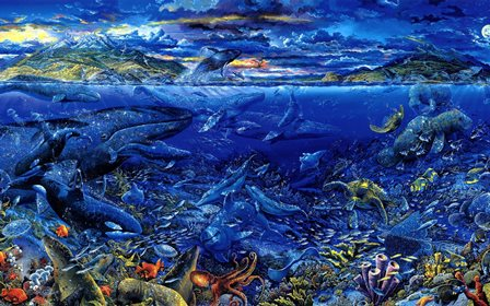 animals fishes whales tropical underwater water sea ocean color detail <font><b>life</b></font> <font><b>coral</b></font> <font><b>reef</b></font> turtle Home Decoration Canvas Poster