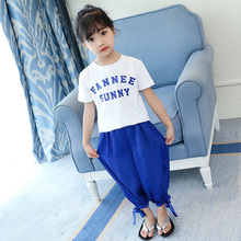 Summer Girls Clothes Sets Baby Girl Short Sleeve Shirt Top+pants Suits Kids Clothing Printed Children's Clothes 2pcs 2pcs baby girl set cotton t shirt baby girl clothes girls clothing sets short sleeve skirts casual 2pcs girls suits