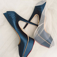 Blue Color Nightclub Wedding Runway Shoes Pointed Toe Waterproof Platform High Heeled Shoes Women Pumps New Fashion Lady Shoes