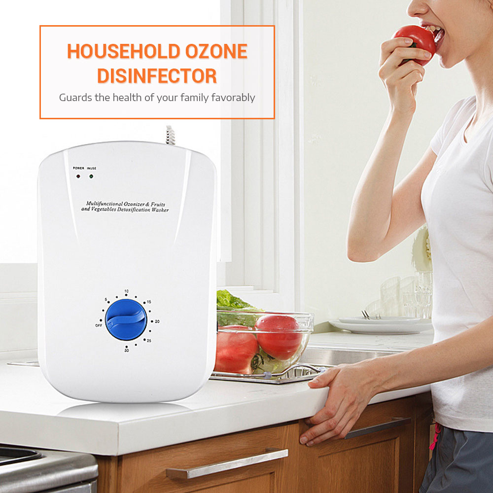 Ozone Disinfector With 6 Timing Options Toxin Removal / Food Sterilization Air Purifiers Oil Vegetable Meat Fresh Purify Water