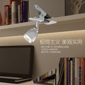 A1 Led clip small lamp dormitory reading eye book desk lamp bedroom bedside mini plug energy-saving lamp