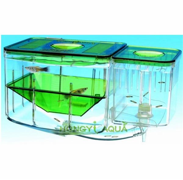 1 piece Acrylic aquarium for incubation isolation hatch box for small fish separation box small fish tank