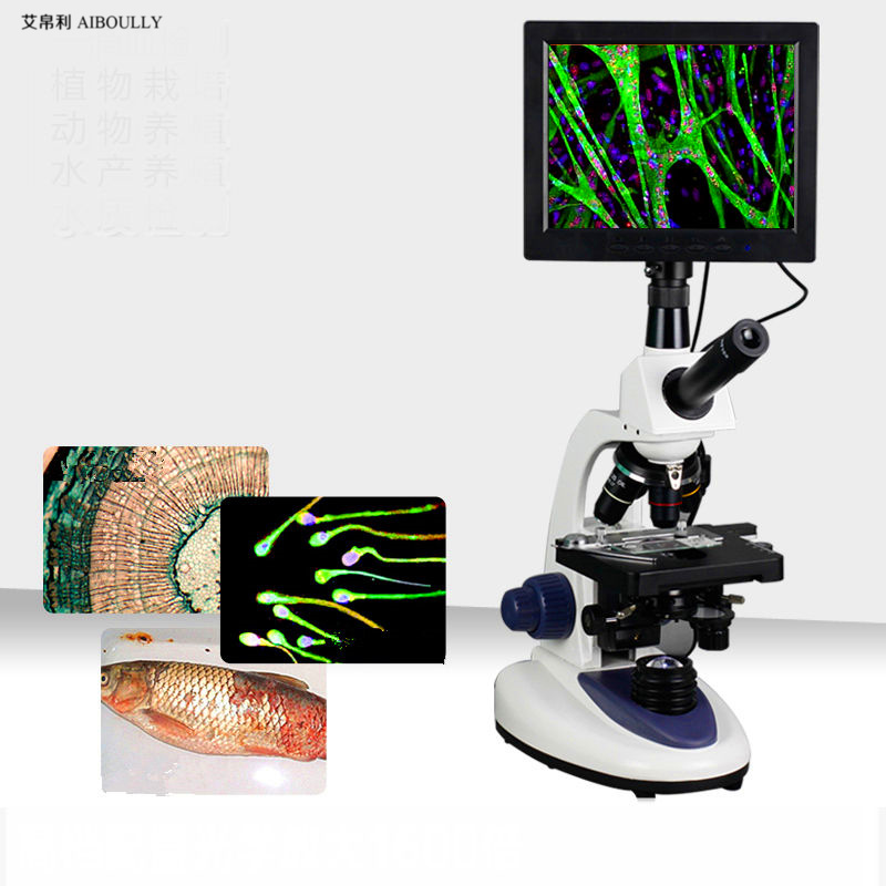 Animals and Plants Cell Blood Instruments Zoom in 1000 times the biomicroscope with 7 inch screen integrated design diagnosis tapan kumar dutta and parimal roychoudhury diagnosis and characterization of bacterial pathogens in animal