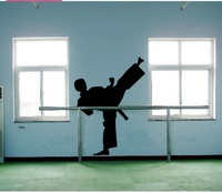 Sports Fashion Kickboxing Wall Martialarts School Training Room The Sitting Room Sofa Background Bedroom Window Glass