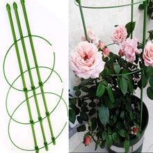 Climbing-Garden-Tool Ladder Scaffold Building 60cm Support-Shelf Vine Flower-Plants Clematis