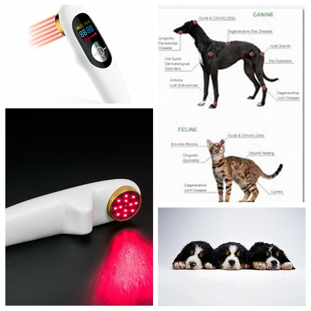 Small size wounds therapy laser therapy for back pain home remedy small size sprain therapy light therapy for pain management home remedy