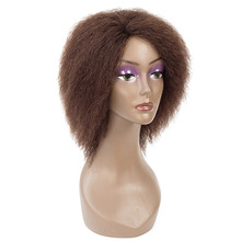 Afro Black Short Human Hair Wigs Light Brown Remy Hair Cosplay Fluffy Short Hair Wig Curly Human Hair Wig Sale For Black Women