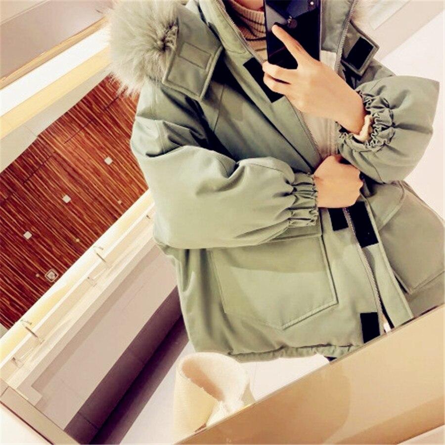 Lâche Femmes Taille De Chaud À Épaississement Pink 2019 Green Plus mint Vêtements Augmenté Nouveau Velours Col Manteau Hiver Arge Fourrure Capuche Coton wF0F5UPXq