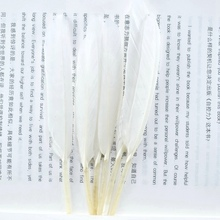 wholesale 20pcs/lot white crafts Natural Goose Feathers 4-6inch/10-15cm DIY Duck feathers bulk Jewelry wedding decoration plumas