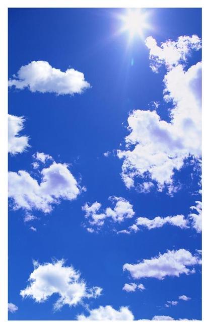 Elegant Blue Sky Ceiling