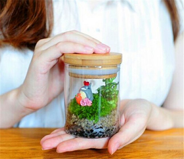 Clear Empty Glass Canister Kitchen Storage Containers Food Grain Storage Bottle and Jars With Lid,Glass Terrarium for Plants
