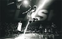 Sports Dwyane Wade Football Player Miami Heat Game Paul Stuck Flying Black And White 4 Sizes