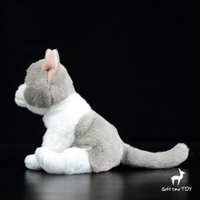 Plush Cats Doll Toy Baby Real Life  Animal Gray And White Cat Dolls Present Girls Toys Shops