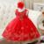 2016 meninas do bebê vestido da menina flor bordado vestido de festa de aniversário da princesa vestido da Menina crianças vestido de Natal roupas