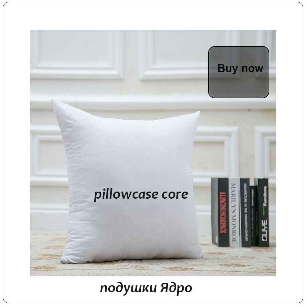 pillow core2