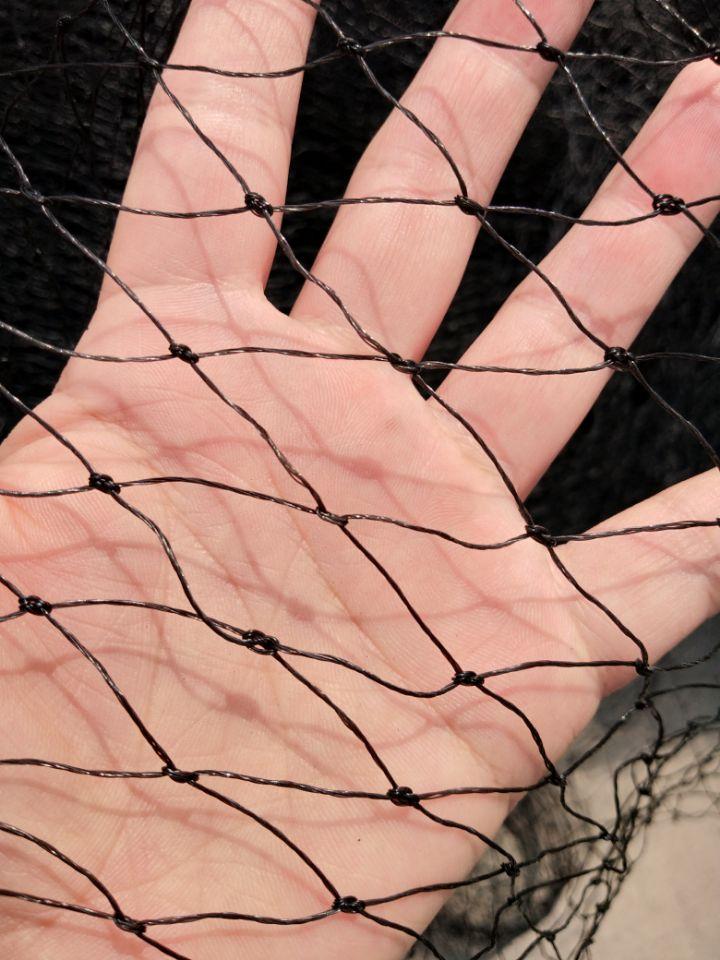 10m Black Plastic Mesh Garden Net