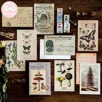 Mr. Paper 30 pièces/boîte ancienne forêt animaux plantes spécimen carte postale Vintage rétro Style créatif écriture voeux cadeau cartes postales