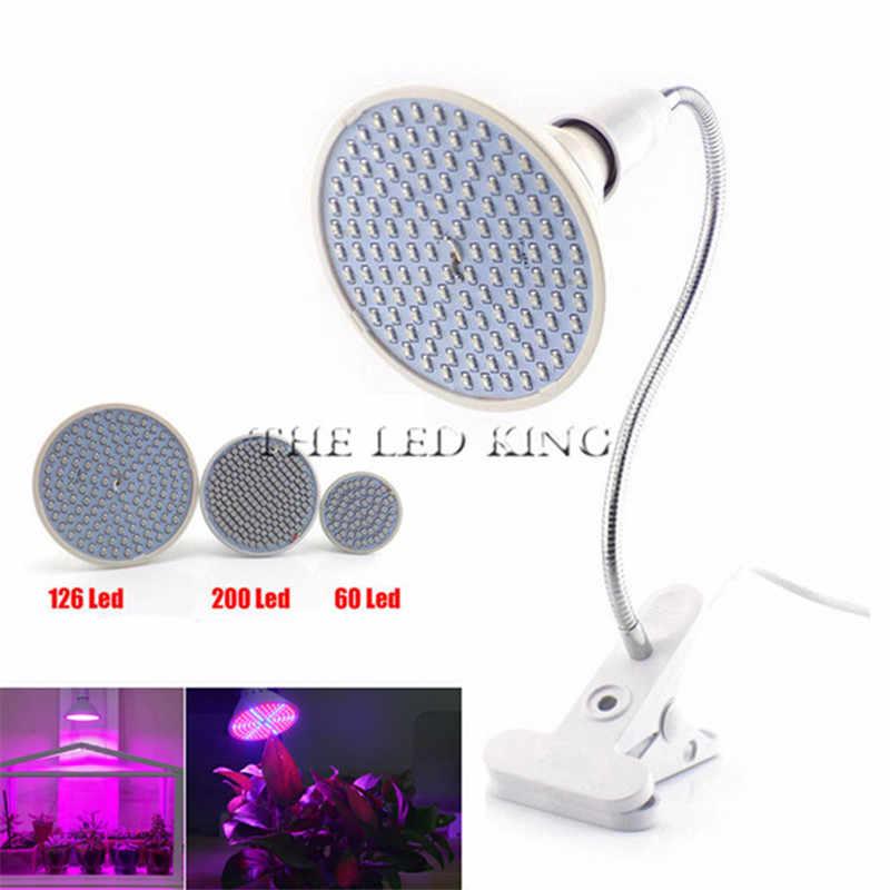 Full Spectrum LED Grow Light 10W 30W 50W 80W Merah Biru UV IR LED Tumbuh Lampu dengan Klip untuk Hidroponik Bunga Tanaman Sayuran