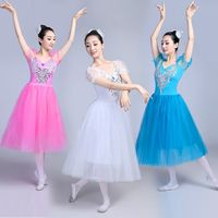 2018 new professional ballet Swan Lake tutu veil costume adult ballet skirt Puff White Classic Ballet Skirt Dress Ballet Costume
