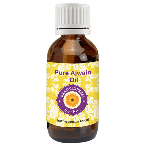 FRee Shipping Pure Ajwain Essential Oil Trachyspermum Ammi 100% Natural Therapeutic Grade  5ML