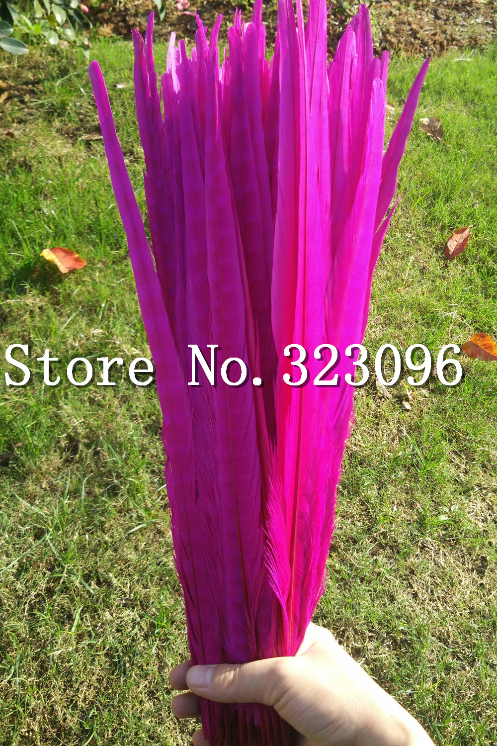 Free shipping:100pcs Pheasant Tail Feathers 40 45 cm / 16 18 inches ...