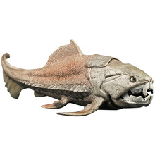 20Cm Dinosaurs Model Toy Dunkleosteus Dinosaur Fish Decoration Action Figure Toys for Children Collection Brinquedos