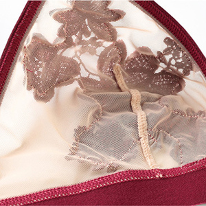Image 5 - Deep V shape bra Mesh Bralette bra and panty Set Transparent Lingerie Appliques underwear women Bra set seethrough elastic trim