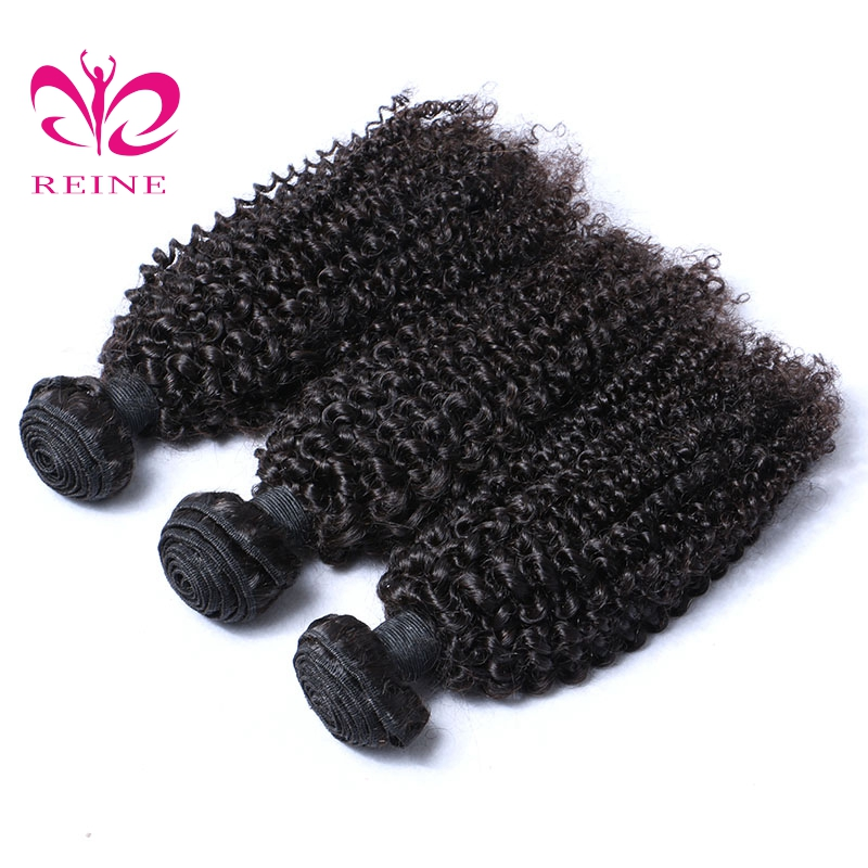 Reine Hair Afro Kinky Curly Weave 100% Human Hair Bundles Malaysian Hair 3 Pieces Natural Black Human Hair Extensions none remy