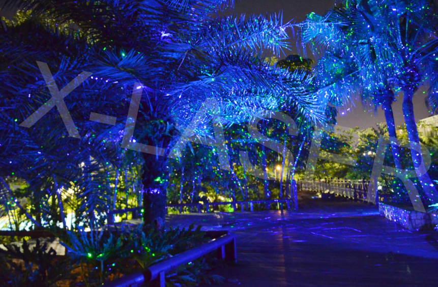 Outdoor Laser Lights For Trees Blue Garden Light Mini Show Projector In Stage Lighting Effect From On Aliexpress