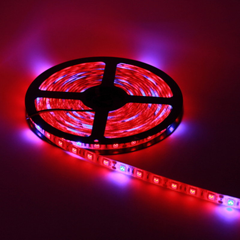 20m Full Spectrum LED Grow Light DC12Vip67 Waterproof With Silicone LED Strip Grow Lamp For Indoor Plant Flowering Hydroponics