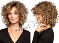 New Short Curly hair wig for Women Synthetic wig Fashion free shipping