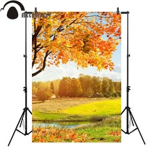 Allenjoy autumn photography backdrop natural gold forest grass river sky Background photobooth photocall newborn