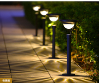 Solar 2LED SMD Super Bright Outdoor Garden Lawn Light solar spot luminaria solar energy luz garden lantern led decoration
