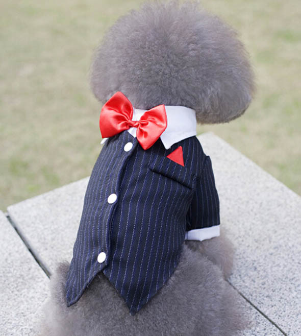 Fashion doggy cool bowknot suits puppy spring summer shirts clothes pet dog cat festival ...