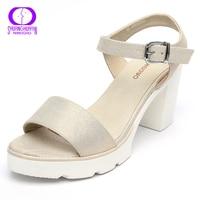 Fashion Summer Women S Sandals Shoes Platform Summer High Heeled Shoes Thick Heel Open Toe Buckle