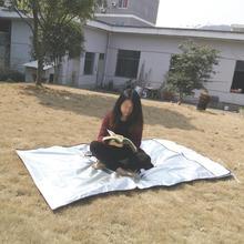 купить Sales Promotion New Emergency Blanket Survival Rescue Insulation Curtain Outdoor Life-saving по цене 817.4 рублей