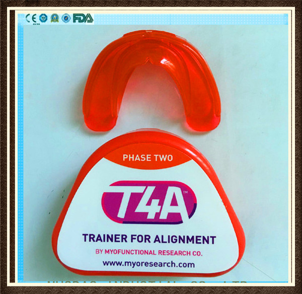 Good quality Highly Flexible t4A teeth orthodontic trainer in educational