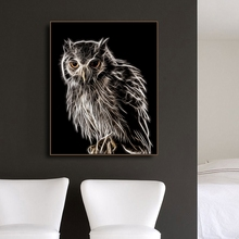 Canvas Painting CalligraphyOwl Photography Animals Print Home Decoration Wall Art Pictures Poster for Living Room Bedroom