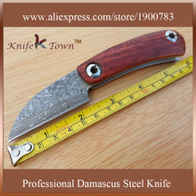 DS027 damascus steel camping knife yellow sandal wood handle hunting knife
