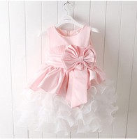 Pink Tulle Wedding Gowns Kids Formal Party Christening Communion Flower Girl Dresses Pageant Dress for Little Girl Big Bow