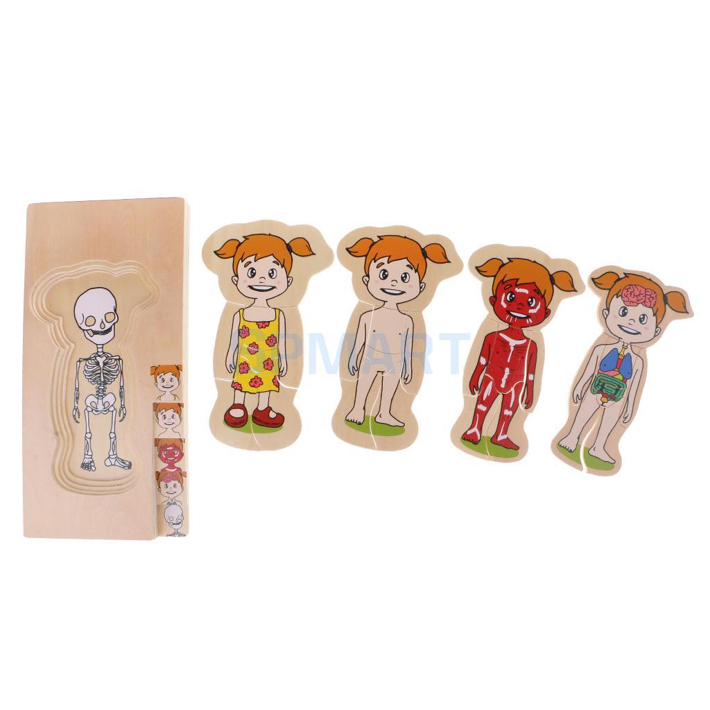 Деревянные познавательная Многослойные головоломки мультфильм детские развивающие игрушки-девушка