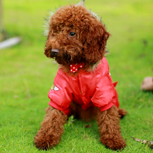 High Quality Wind & Waterproof Dog Winter Coat in USA Air Force Style