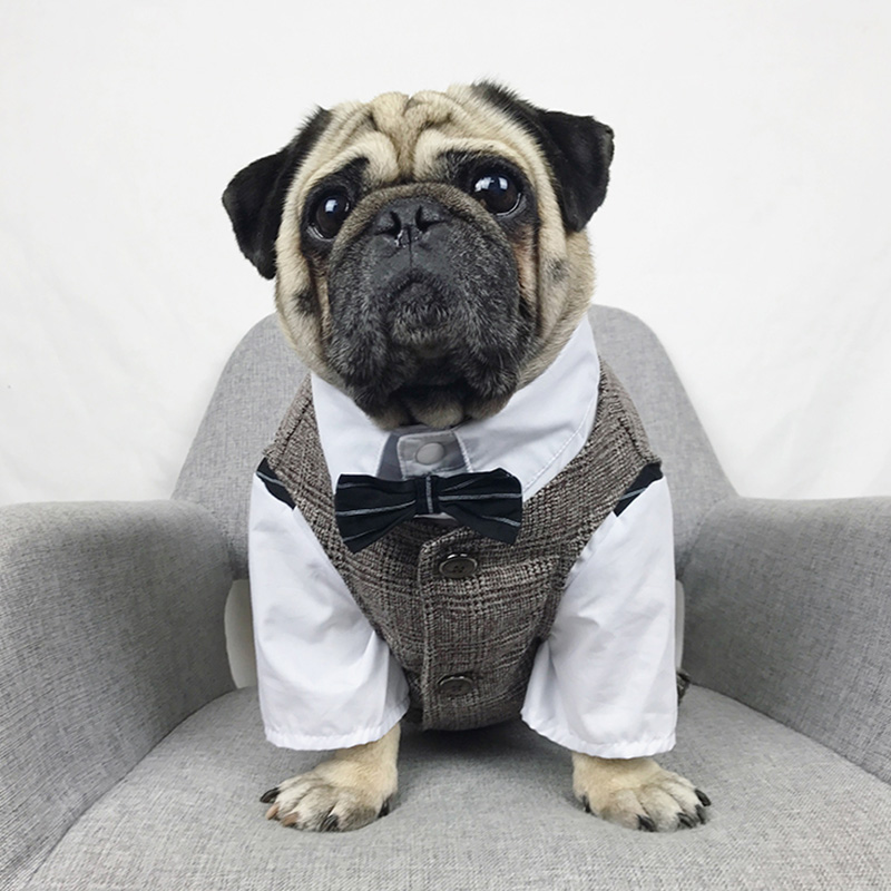 Formal Canine Garments Wedding ceremony Pet Canine Go well with Pets Canine Clothes For Canine Pets Provides XS-XXL Pet Attire Pet Outfit Pug Bulldog HTB1rSFACbGYBuNjy0Foq6AiBFXaU