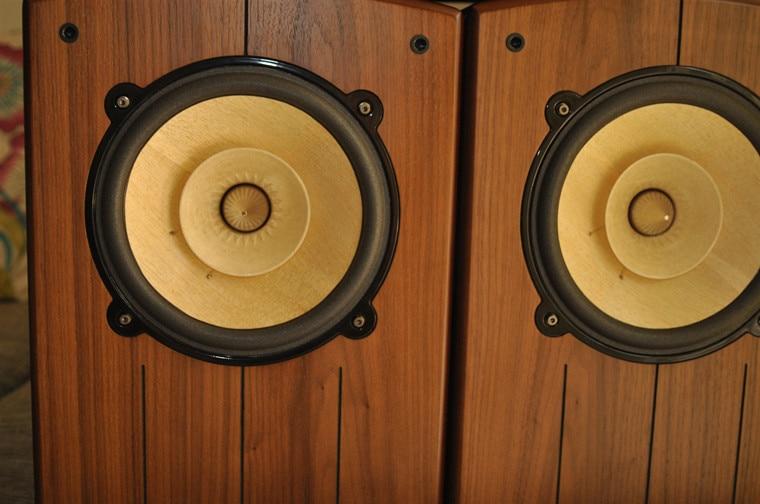 2 unités Melo david audio Voxativ cône en bois HiEND 8nch fullrange haut-parleur tube sons PK Voxative lowther