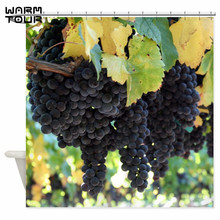 warm tour oversized lush grapes decorative fabric shower curtains polyester waterproof bathroom curtain wtc092