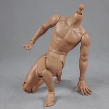 2.0 Largura De Muscular